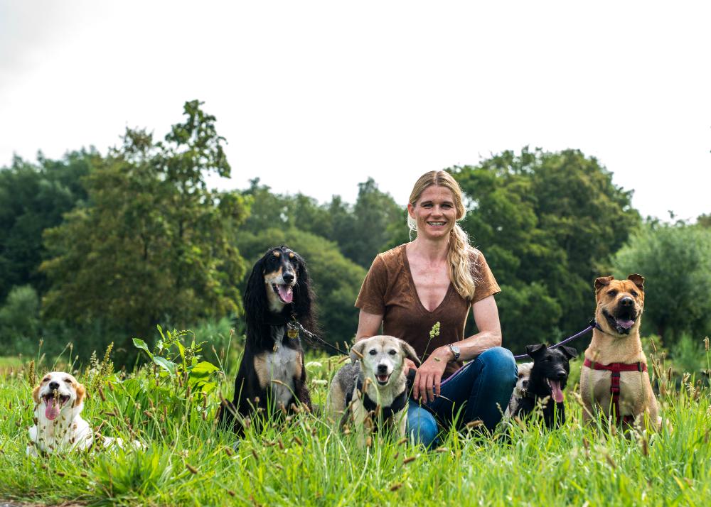 Mr Gulickx (en), Group Photo In The Grass Sitting 1258 Klein
